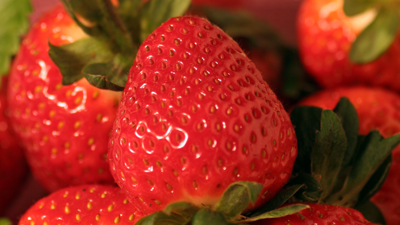 Eumundi Strawberries