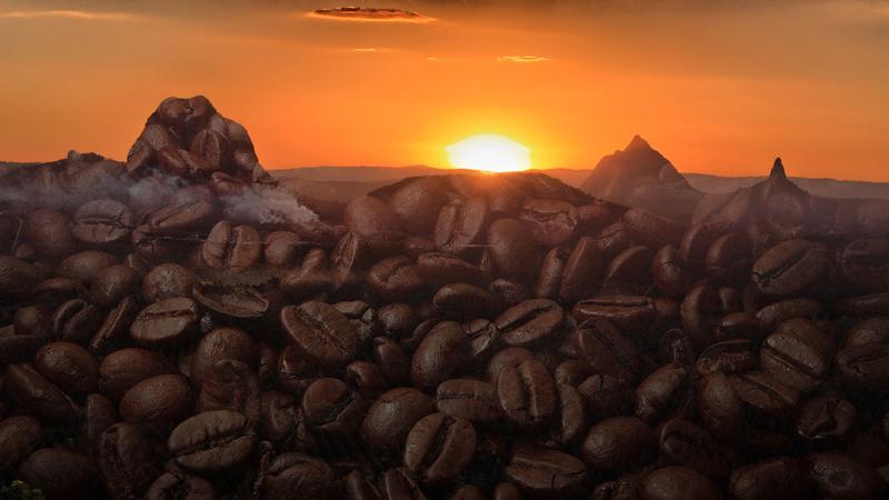 Glasshouse Mountains Coffee
