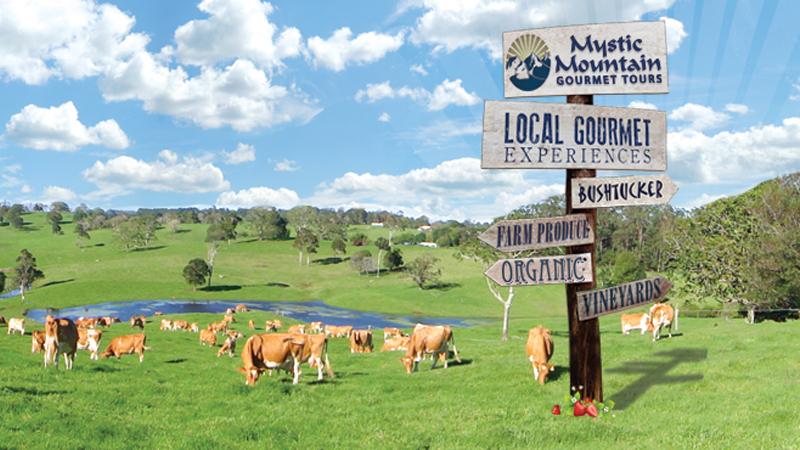 Mystic Mountain Gourmet Tours