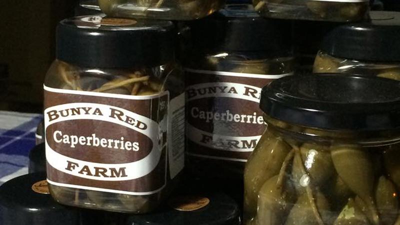 Bunya Red Farm