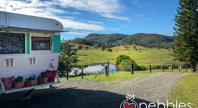 FAN, Hinterland Feijoas and the business of farm visits...